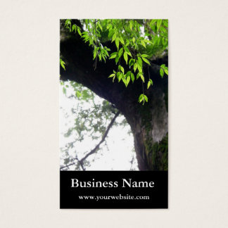 Tree l Still Nature l Photography Business Card