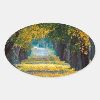 Tree Louisville Roadway Kentucky Oval Sticker