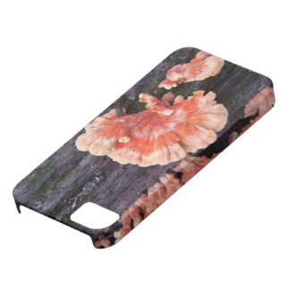 Tree Rot Case For The iPhone 5