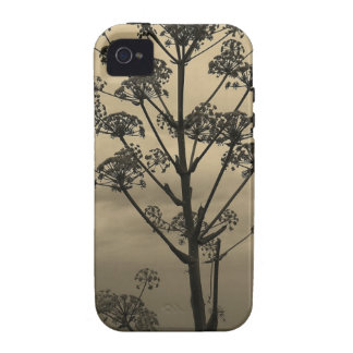 Tree Silhouette Brown Sky iPhone 4/4S Cases