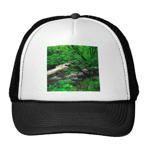 Tree Smoky Mountains National Trucker Hats