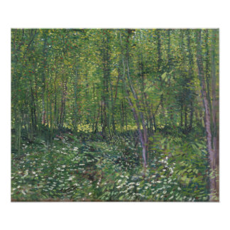 Trees and Undergrowth by Vincent Van Gogh Photo Print