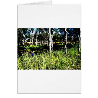 TREES & DAM ABSTRACT PHOTO QUEENSLAND AUSTRALIA CARD
