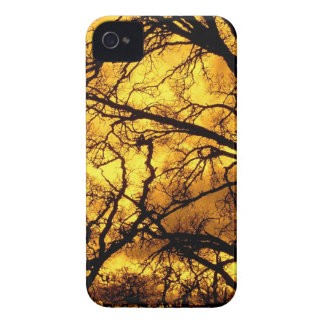 Trees Devils Sky Mount Diablo iPhone 4 Case-Mate Cases