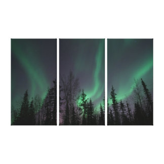 TREES W/NORTHERN LIGHTS BACKGROUND CANVAS CANVAS PRINT