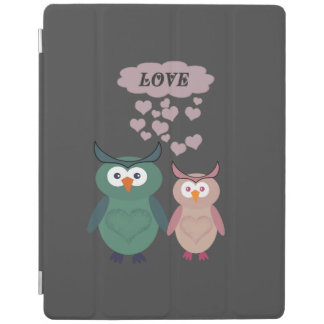 Trendy cute owl love couple iPad cover