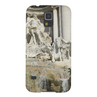 Trevi Fountain Galaxy S5 Covers