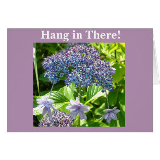 Trinity Hang in There Card