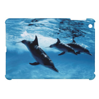 Trio of Dolphins iPad Mini Covers
