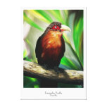 Tropical Bird cool colourful exotic painting Gallery Wrapped Canvas