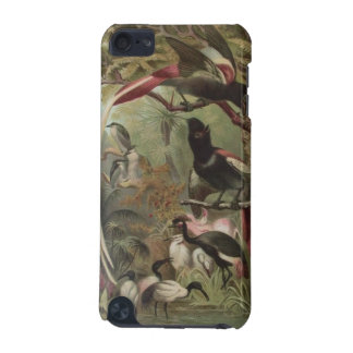Tropical Birds MP3 Case For iPod Touch 5G iPod Touch (5th Generation) Cases