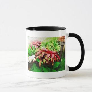 tropical bromeliad, fairchild tropical garden, mia mug