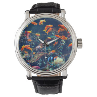Tropical Fish Watch