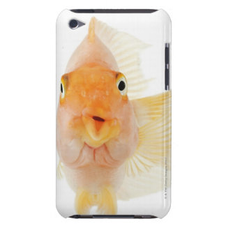 Tropical freshwater fish iPod touch Case-Mate case