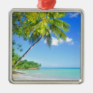 Tropical island in Seychelles Silver-Colored Square Decoration