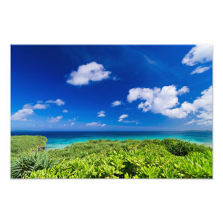 Tropical Island Photo Art