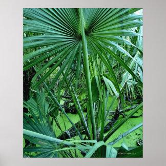 Tropical plants in salt pond print