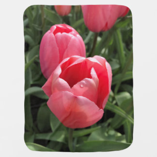 Tulip Baby Blanket