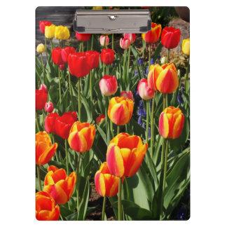 Tulip Patch Clipboard