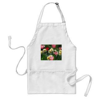 tulip,pink tulip and daffodil standard apron