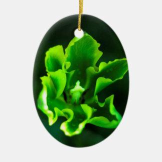 Tulips Green.jpg Ceramic Oval Decoration