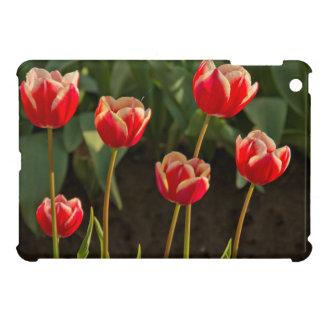 Tulips, Tulip Festival, Woodburn, Oregon, USA 1 iPad Mini Cases