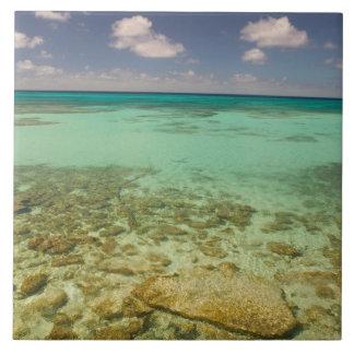 Turks and Caicos, Grand Turk Island, Cockburn 2 Tile
