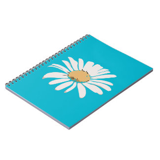 Turquoise Daisy Floral Photo Notebook