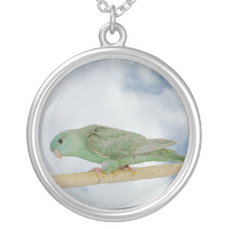 Turquoise dilute linnie silver plated necklace