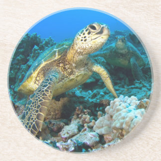 Turtle Pair Coaster