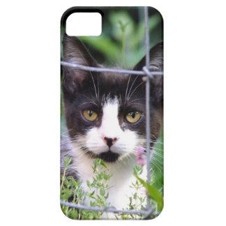 Tuxedo Kitten Xena in the Garden iPhone 4 Case