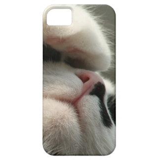 Tuxedo Kitty Has A Sick Headache iPhone 5 Cover