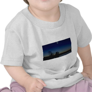 Twilight Tshirts