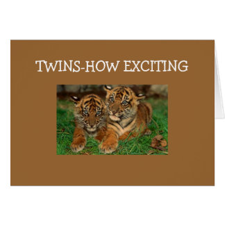 TWINS-HOW EXCITING CARD