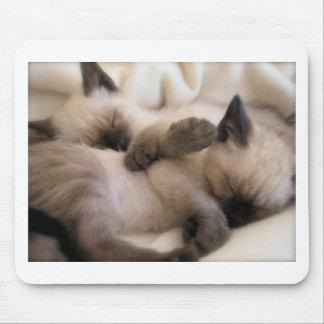 Twins Pet Cat Cute Siamese Kitten Mouse Pad