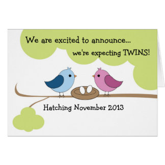 "Twins Pregnancy Announcement ""Birds in Nest"" Greeting Card"