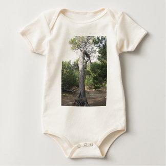 Twisted Tree Baby Bodysuit