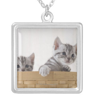 Two American Shorthair Kittens Silver Plated Necklace