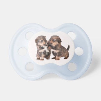 Two Cute Yorkshire Puppies Dummy