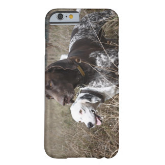 Two Dogs in Field, Houston, Texas, USA Barely There iPhone 6 Case