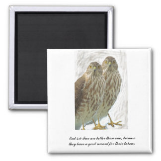 Two Hawks Birds Eccl 4:9 Scripture Christian Magnet