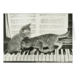 Two kitten playing on piano keyboard, (B&W) Greeting Cards