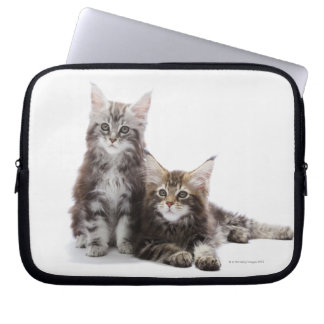 Two kittens of Maine coon cat Laptop Sleeve