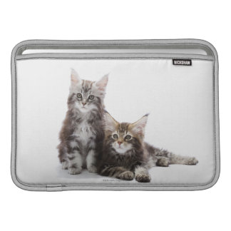 Two kittens of Maine coon cat MacBook Sleeve
