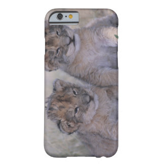 Two Lion Cubs Barely There iPhone 6 Case