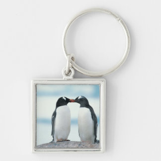 Two Penguins touching beaks Silver-Colored Square Key Ring