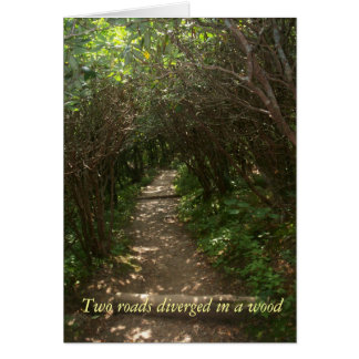 Two roads diverged in a wood summer notecard note card