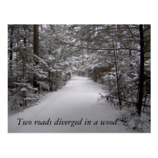 Two roads diverged in a wood winter postcard
