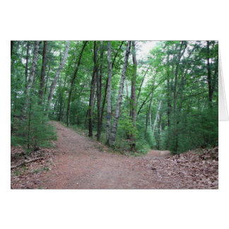 Two Roads Diverged In A Yellow Wood Greeting Card
