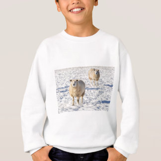 Two sheep standing in snow during winter sweatshirt